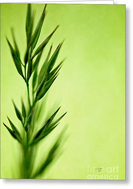 Green Greeting Card by Lois Bryan