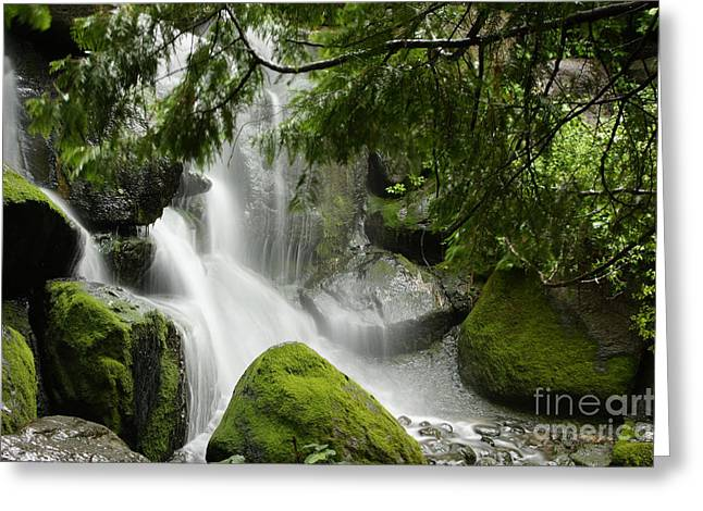 Green Moss Waterfall Greeting Card