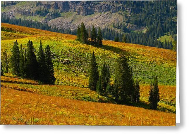 Green Mountain Trail Greeting Card by Raymond Salani III