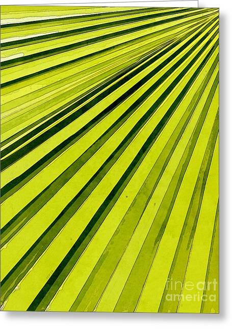 Green Palm Frond Greeting Card