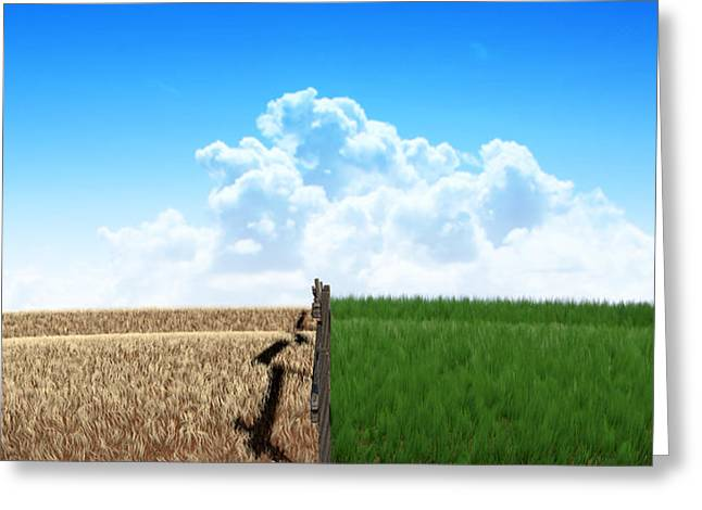 Green Pastures With Fence Greeting Card