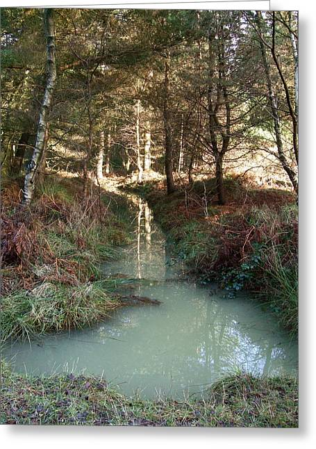 Green Reflections Greeting Card by Jean Walker