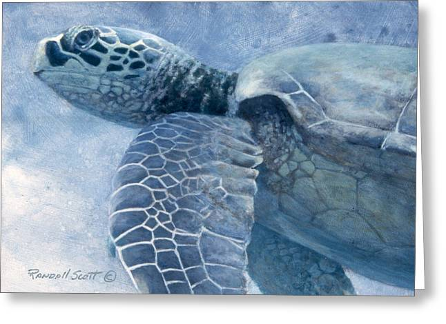Green Sea Turtle Greeting Card by Randall Scott