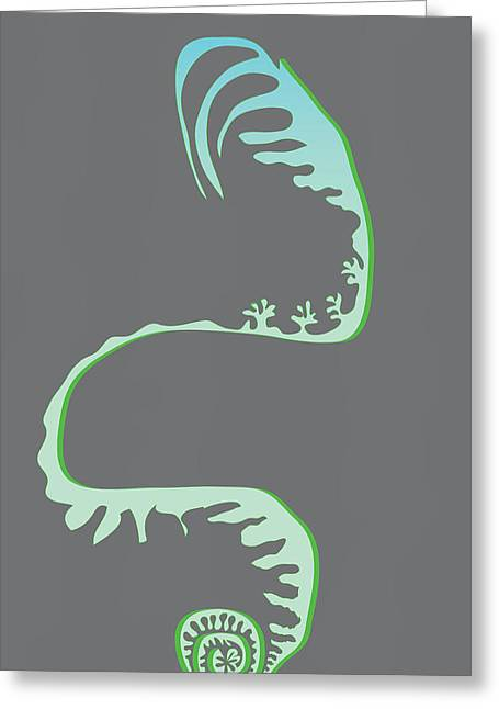 Green Spiral Evolution Greeting Card