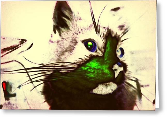 Green Spot Kitty Greeting Card by Eddie G