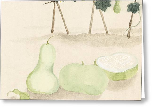 Green Squash Greeting Card by Aged Pixel