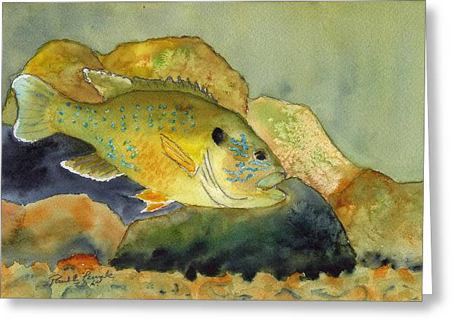 Green Sunfish Greeting Card by Paul Temple