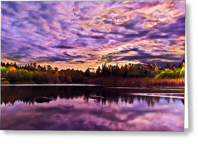 Green Timbers Park At Sunset Greeting Card