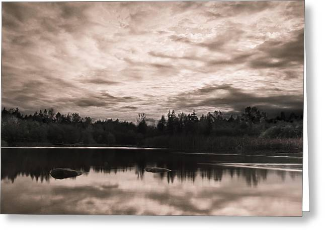 Green Timbers Park At Sunset - Sepia Greeting Card