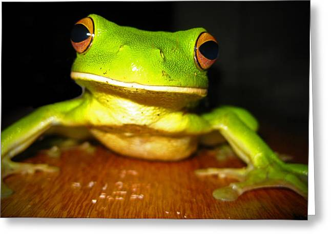 Green Tree Frog Greeting Card by Laura Hiesinger