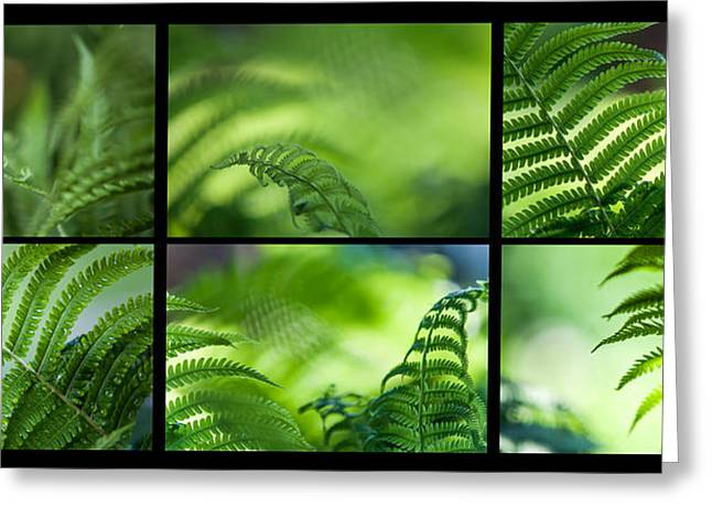 Green World. Polyptich For Interiors Greeting Card