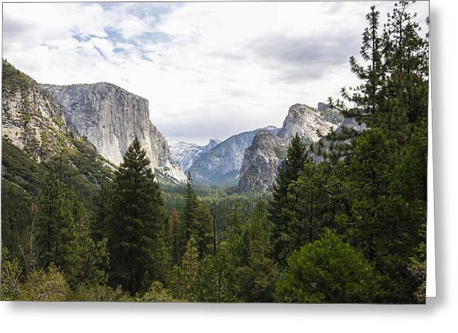 Green Yosemite Valley Greeting Card