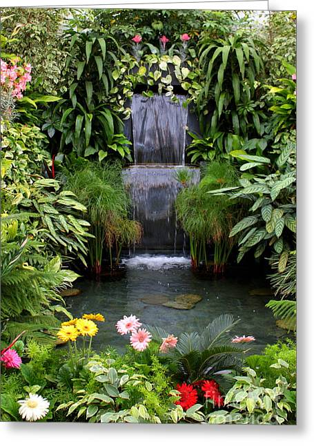 Greenhouse Garden Waterfall Greeting Card by Carol Groenen