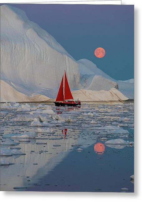 Greenland Night Greeting Card