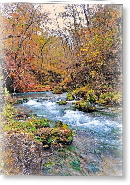 Greer Spring In Fall Greeting Card by Marty Koch