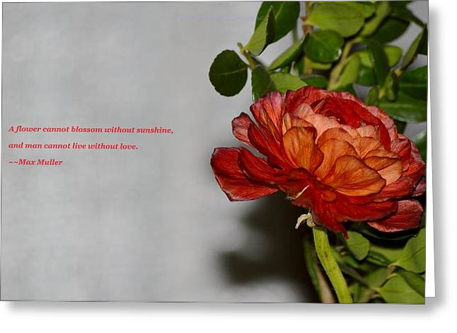 Greeting Of Love Greeting Card by Sonali Gangane
