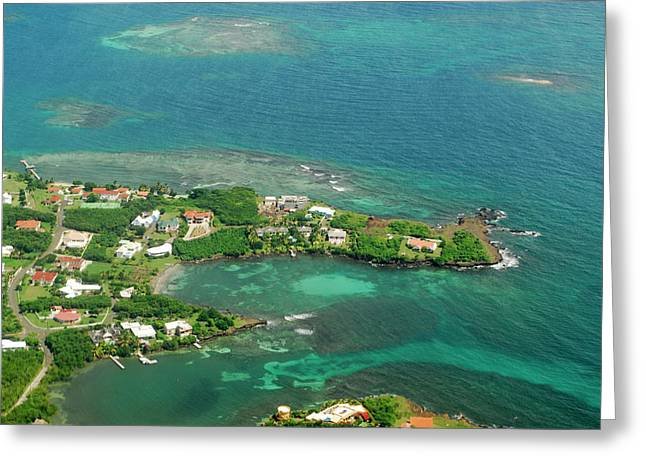 Grenada, Aerial View Of City Of St Greeting Card