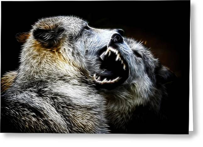Grey Wolf Fight Greeting Card
