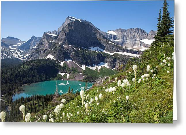 Grinnell Lake With Beargrass Greeting Card by Jack Bell