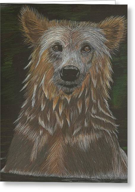 Grizzly Bath Greeting Card