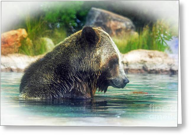 Grizzly Bear Enjoying A Dip In The Water Fade To White Version Greeting Card by Jim Fitzpatrick