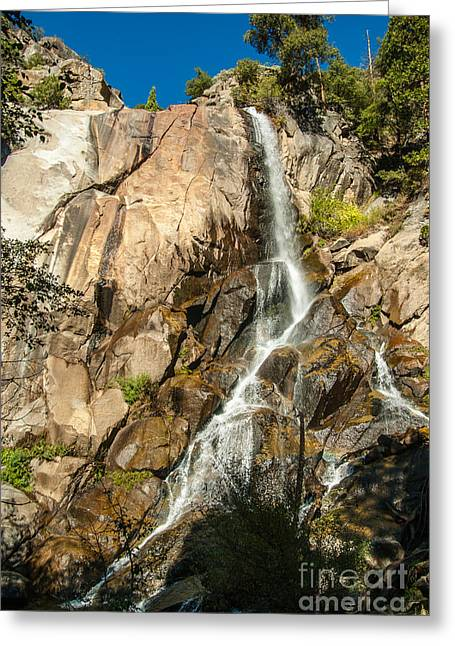 Grizzly Falls 1-7773 Greeting Card