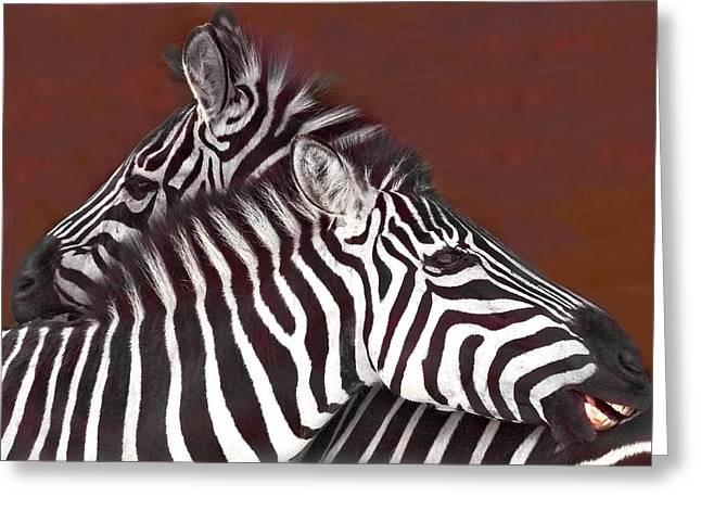 Grooming Zebras Greeting Card