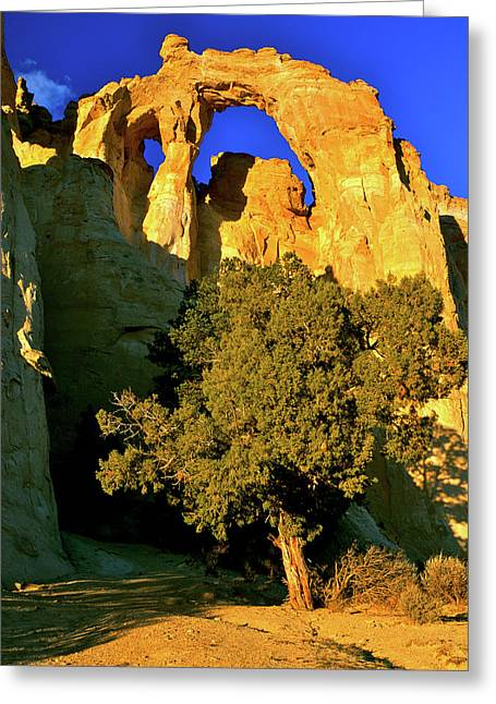 National geographic greeting cards page 24 of 34 fine art america grosvenor arch at sunset greeting card m4hsunfo