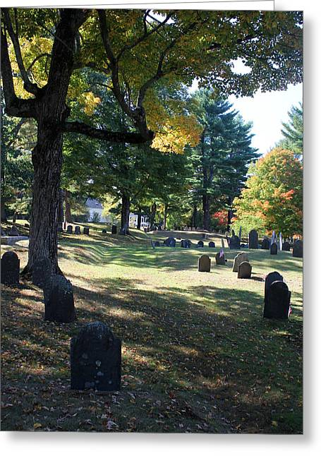 Groton Cemetery 1 Greeting Card by Mary Bedy