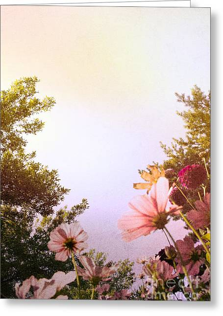 Ground View Greeting Card by Margie Hurwich