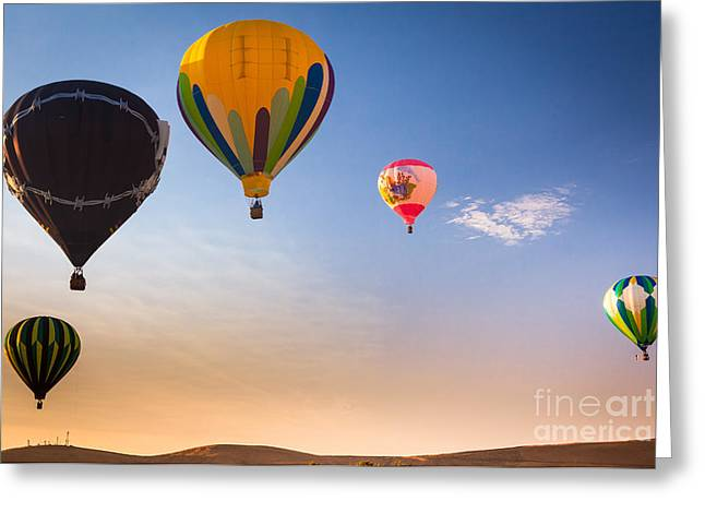 Group Of Balloons Greeting Card by Inge Johnsson
