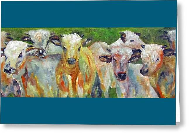 The Gathering, Cattle   Greeting Card