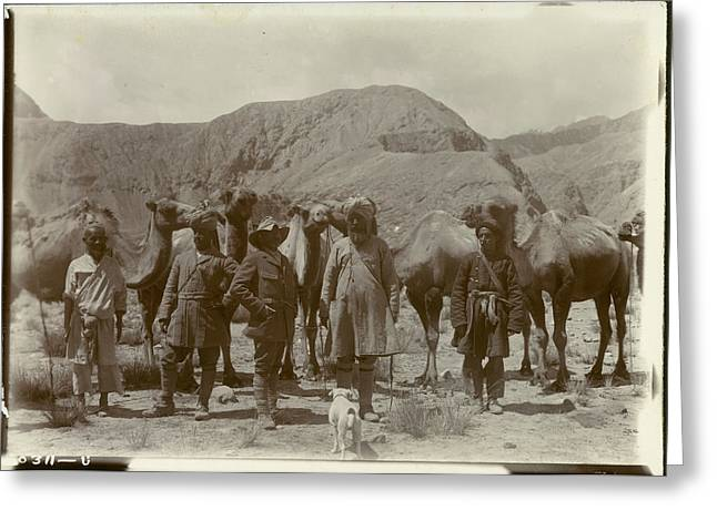 Group Posed With Camels Greeting Card by British Library