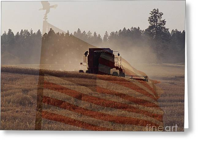 Grown In America Greeting Card by Sharon Elliott