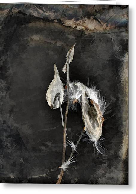 The Seeds Of Dark Nature Greeting Card