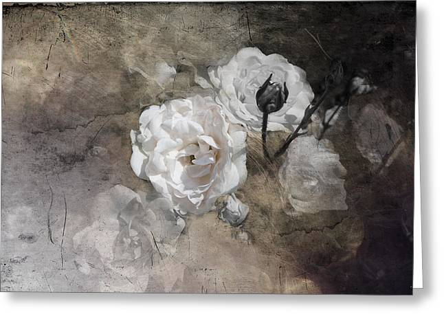 Grunge White Rose Greeting Card by Evie Carrier