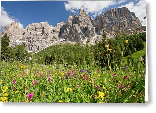 Gruppo Di Sella Mountains Greeting Card by Bob Gibbons