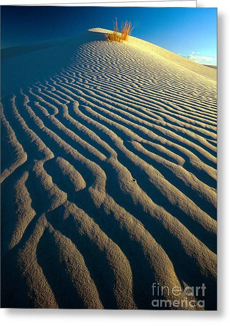 Guadalupe Dune Greeting Card by Inge Johnsson