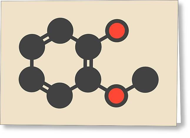 Guaiacol Aromatic Molecule Greeting Card by Molekuul