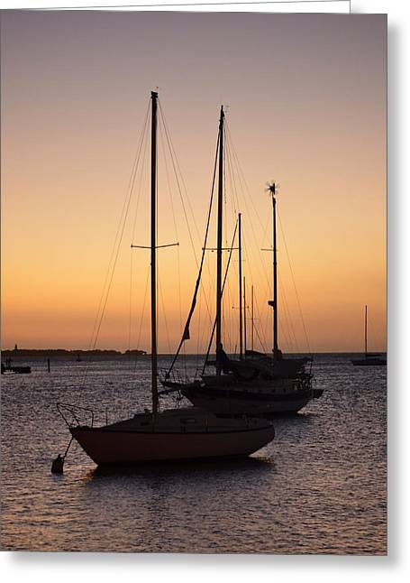 Guancha I Greeting Card