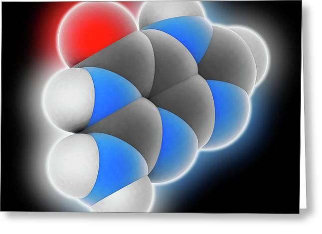 Guanine Molecule Greeting Card by Laguna Design