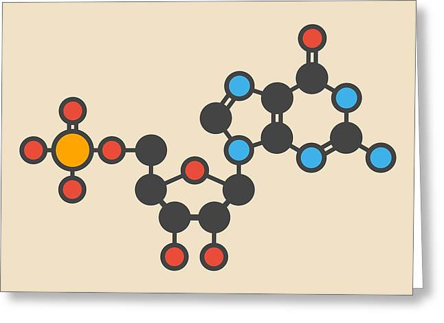 Guanylic Acid Molecule Greeting Card by Molekuul
