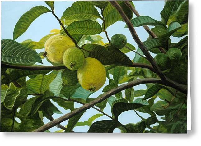 Guava Greeting Card