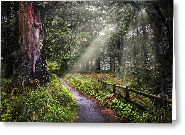 Guiding Light Greeting Card by Debra and Dave Vanderlaan