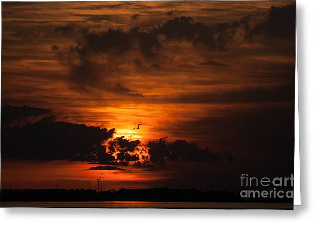 Gulf Coast Sunset 1 Greeting Card