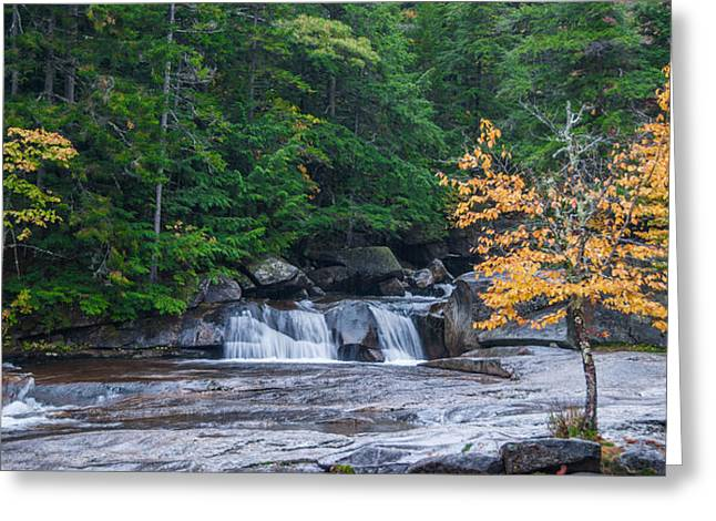 Gulf Hagas Brook Greeting Card by Guy Whiteley