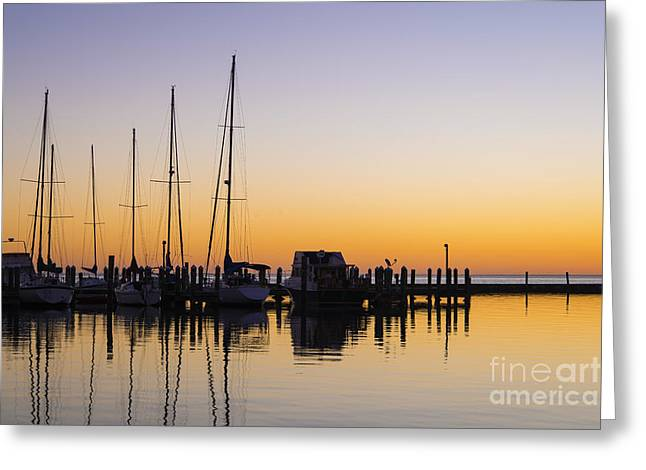 Gulf Of Mexico Sailboats At Sunrise Greeting Card by Andre Babiak