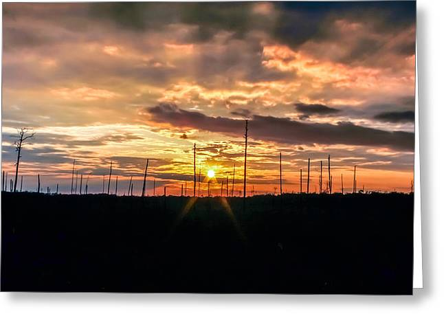 Gulf Shore Sunset Greeting Card by Rob Sellers