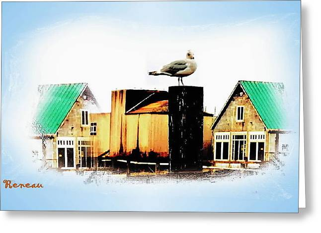 Gull House Greeting Card by Sadie Reneau