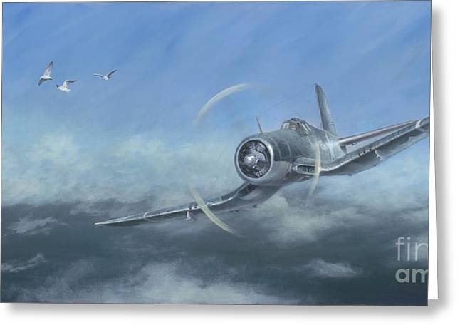 Gull Wings Greeting Card by Stephen Roberson